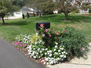 Decorating Mailbox at Foot of Driveway