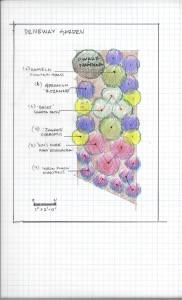 Driveway garden plan drawing